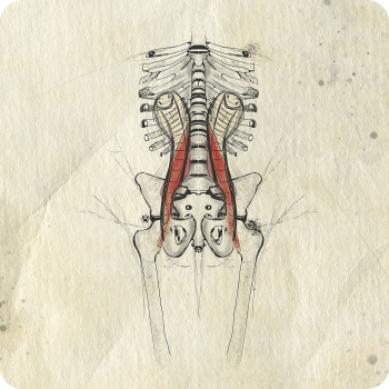 Food for thoughts on the term PSOAS
